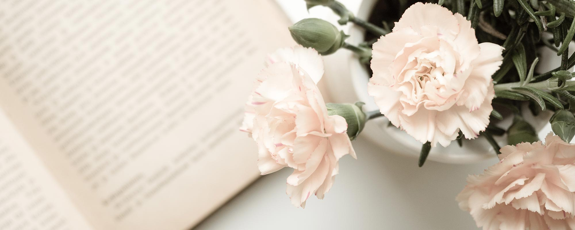 kukka ja kirja